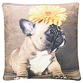 Dog with Flower Cushion