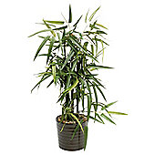 48cm Artificial Bamboo in Round Ceramic Pot