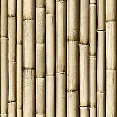 Muriva Bamboo Wallpaper - J22317