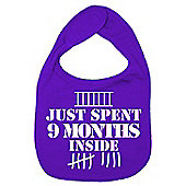 Dirty Fingers Just spent 9 months inside Baby Bib Purple