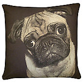 Curious Pug Cushion