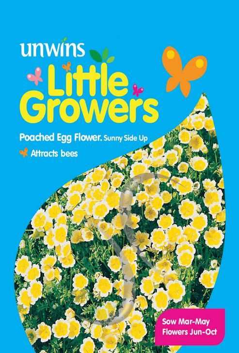 Little Growers Poached Egg Flower Sunny-Side