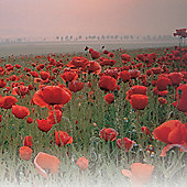Poppy (Wild) - 1 packet (2000 seeds)
