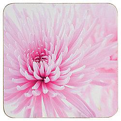 Tesco Pink Floral Coaster