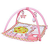 Hello Ernest Playgym Pink Red Kite