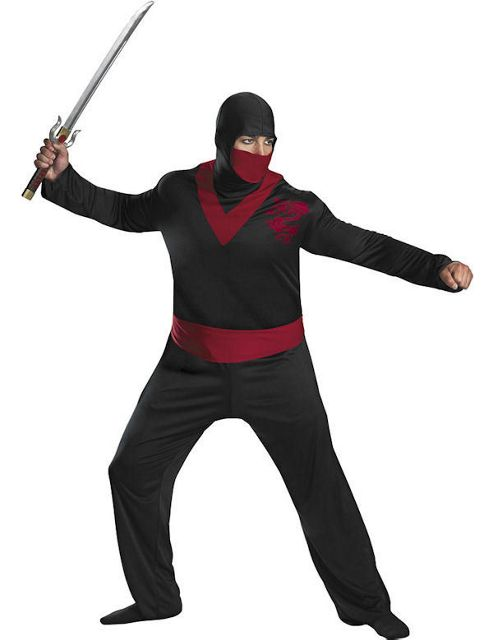 Ninja Warrior Costume (Plus Size)