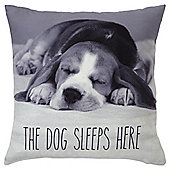 """Dog Sleeps Here"" Cushion"