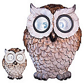 Dobbies Solar Owl - Twin pk