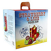 Youngs premium cider - Strawberry and Lime 40 pint (23l) kit