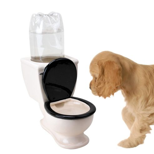 Toilet Shaped Dog Bowl