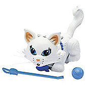 Pet Parade Single Kitten Pack - Persian