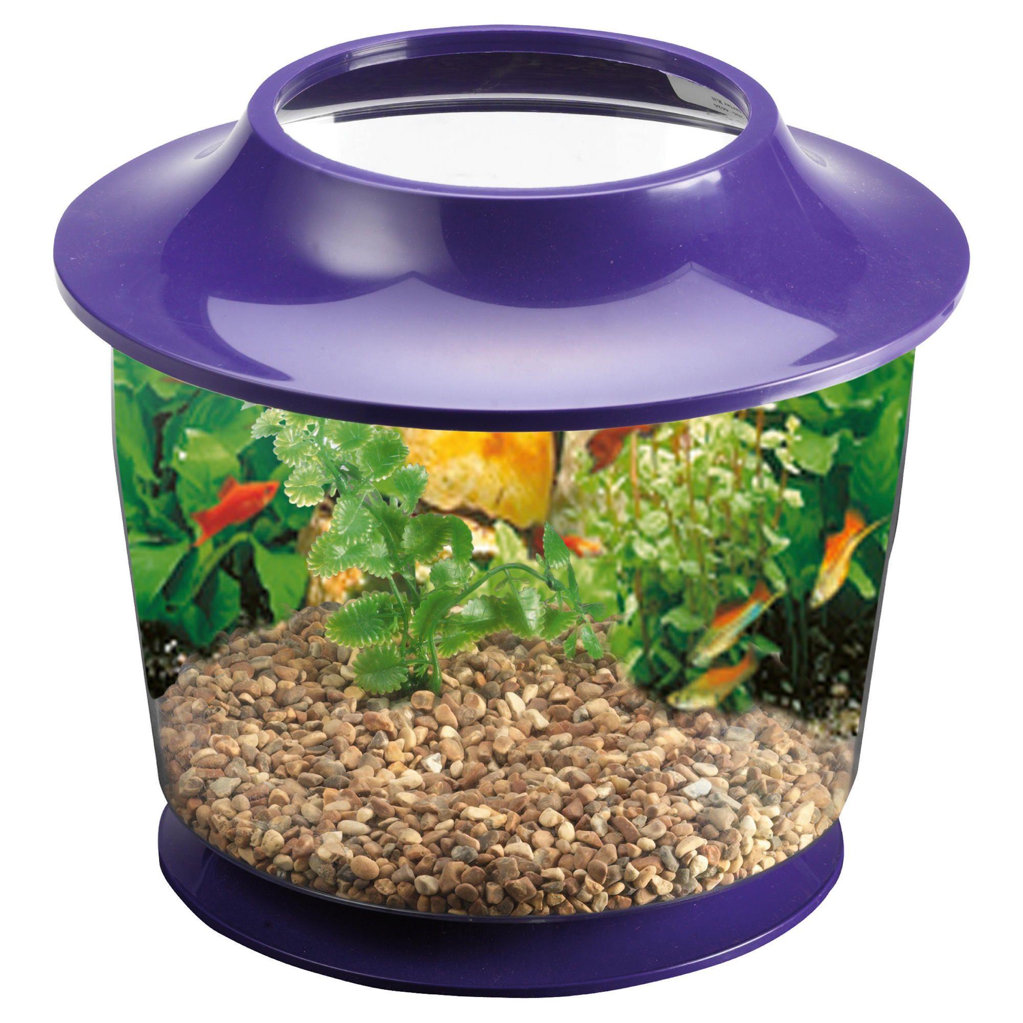Myshop for Fish tank starter kit