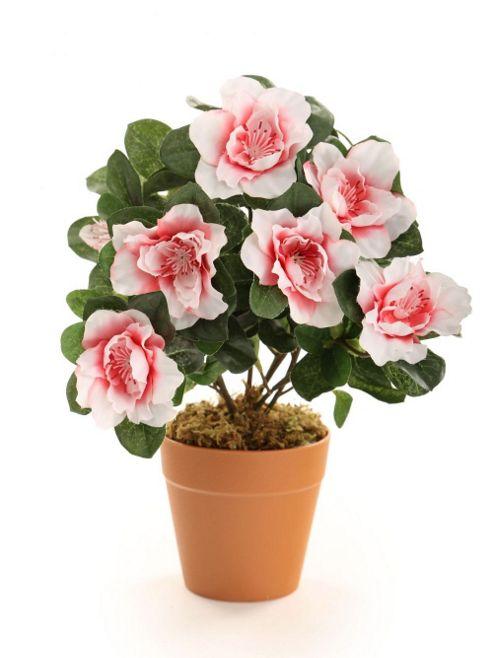 buy artificial 27cm pink azalea plug plant from our. Black Bedroom Furniture Sets. Home Design Ideas