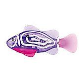 Robo Fish Tropical - Purple Chromis