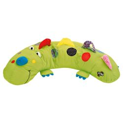 Galt Soft Play Activity Dino