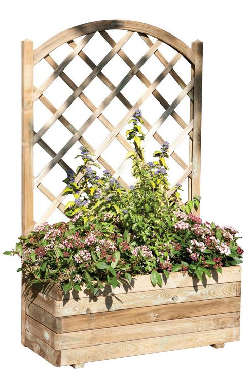 Buy Rowlinson Rectangular Planter With Lattice From Our