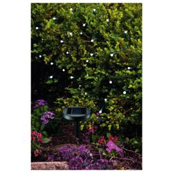 50 Berry White LED Solar Line Light