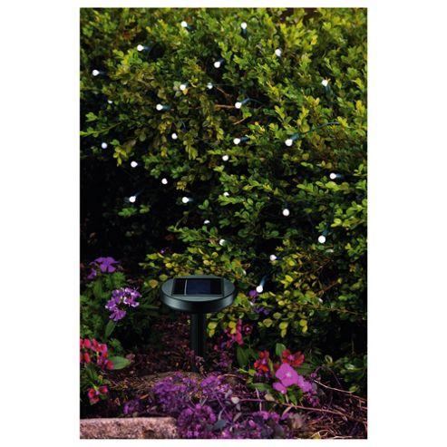 50 Berry White LED Solar Line Light