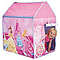 Disney Princess Wendy Tent