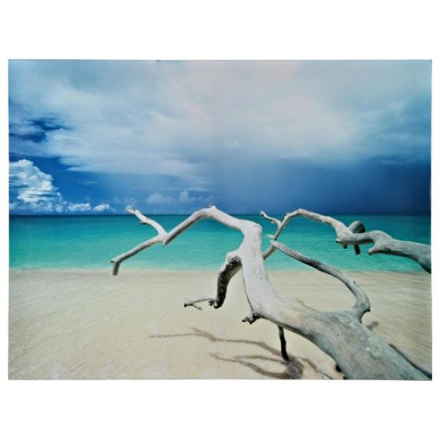 Driftwood Beach Antigua Canvas 60X80Cm