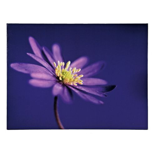 Purple Flower Canvas 60X80Cm