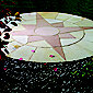 Large Star Circle Patio Kit