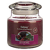 Colony Mullberry Medium Candle Jar
