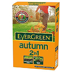 Evergreen Autumn 2 in 1 carton