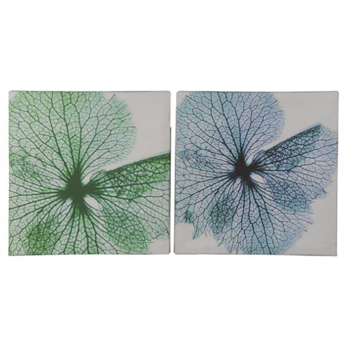 2 Pack flower canvas