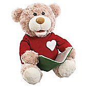 Snugglepets Storybook Bear
