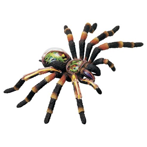 Revell X-Ray Animals Tarantula Spider