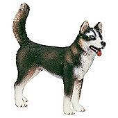 Schleich Husky Male
