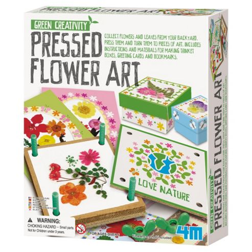 Green Creatvitiy Pressed Flower Art
