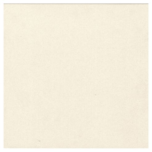 Porcelain Multi Use Tile (60x60cm) White