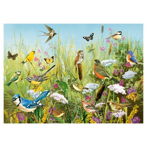 Games Feathered Friends 1000 Pieces Jigsaw Puzzle