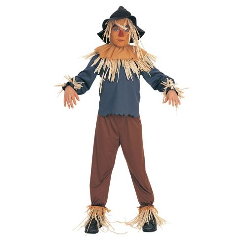 Wizard Of Oz Scarecrow S
