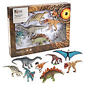 Dinosaur 8 Piece Boxed Set Multi