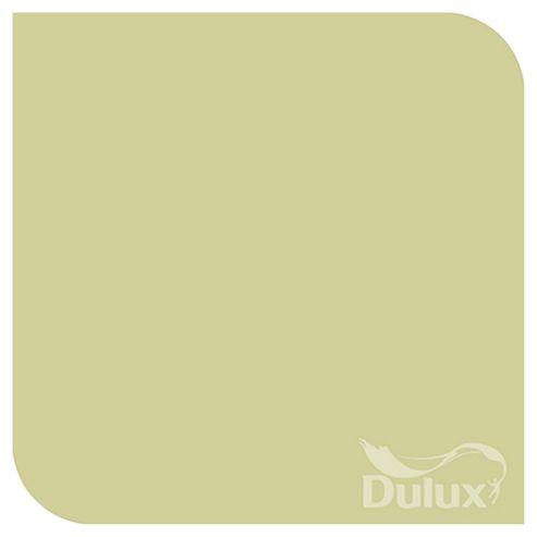 Tesco Dulux Coloured Emulsion Paint