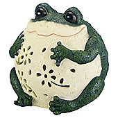 Decorative Wildlife Solar Frog Light