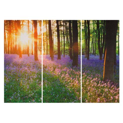 Woodland Tryptic Canvas H60xW80xD2.8cm
