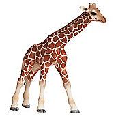 Schleich Giraffe Calf