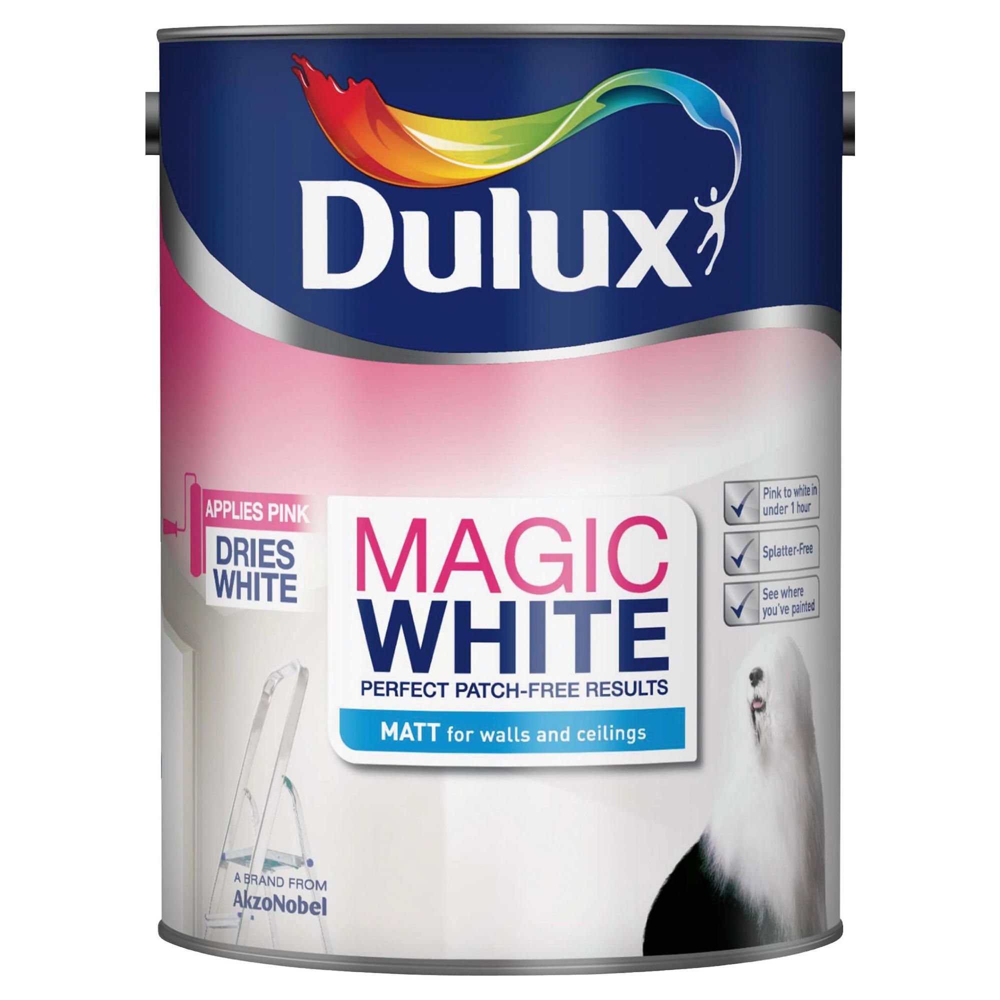 Home and garden diy decorating dulux magic white rich for Can you use emulsion paint on canvas