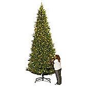 Colorado Spruce 15Ft Christmas Tree