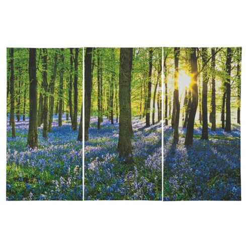 Bluebell Wood Trptych Canvas 75x50x1.8cm