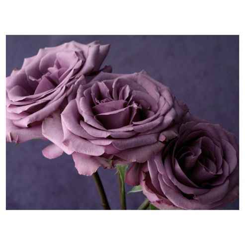 Pink Roses Triptych Canvas 160x110x3cm
