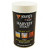 Youngs Harvest Stout 30pt