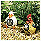 Farmyard Animal Spotlights Hen & Duck
