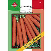 Carrot 'Fucino Mezza Lunga' - Vita Sementi® Italian Seeds - 1 packet (7200 carrot seeds)