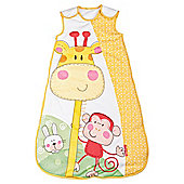 Fisher Price Discover & Grow Baby Sleeping Bag 6-12 Months