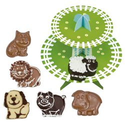 Galt Chocolate Making Activity Pack